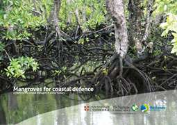 Mangroves for coastal defence. Guidelines for coastal managers & policy makers.